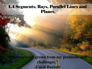 1.4 Segments, Rays, Parallel Lines and Planes