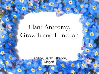 Plant Anatomy,  Growth and Function