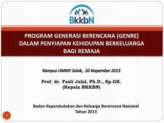 Badan Kependudukan dan Keluarga Berencana Nasional Tahun 2013