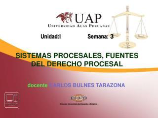 docente CARLOS BULNES TARAZONA