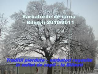Sarbatorile de iarna – Biliesti 2010/2011
