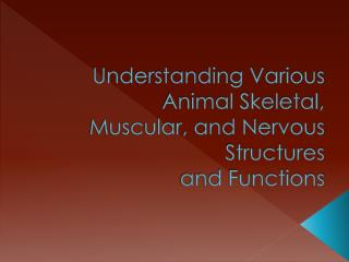 Understanding Various Animal Skeletal, Muscular, and Nervous Structures and Functions