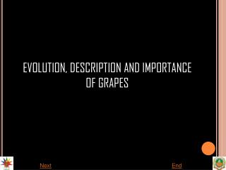 EVOLUTION, DESCRIPTION AND IMPORTANCE OF GRAPES