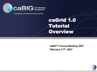 CaGrid 1.0 Tutorial Overview