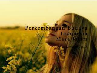 Perkembangan Budaya Indonesia  Masa  Islam