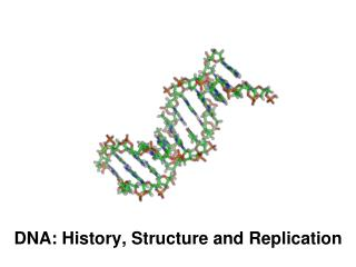 DNA: History, Structure and Replication