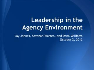 Leadership in the Agency Environment