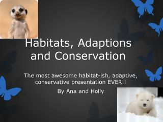 Habitats, Adaptions and Conservation
