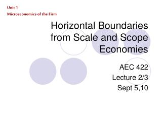 Horizontal Boundaries from Scale and Scope Economies