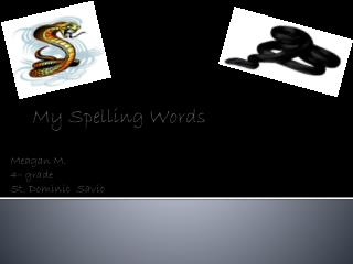 My Spelling Words