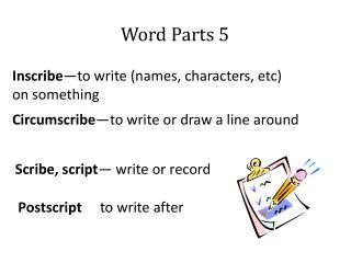 Word Parts 5