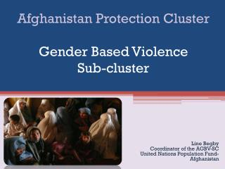 Afghanistan Protection Cluster Gender Based Violence  Sub-cluster