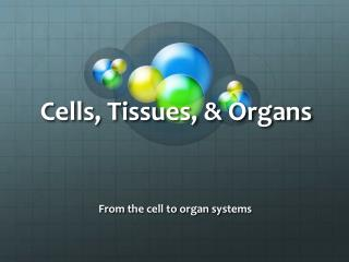 Cells, Tissues, & Organs