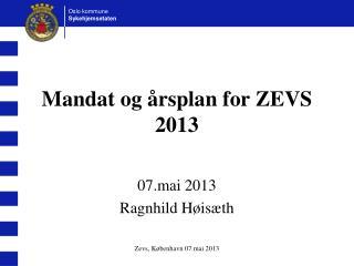 Mandat og årsplan for ZEVS 2013