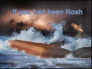 If you had been Noah