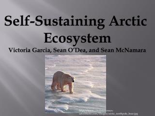 Self-Sustaining Arctic  Ecosystem Victoria Garcia, Sean O'Dea, and Sean McNamara