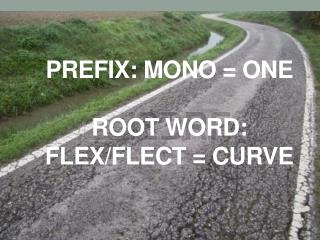 Prefix: Mono = one root word: flex/ flect  = curve