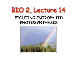 BIO 2, Lecture 14