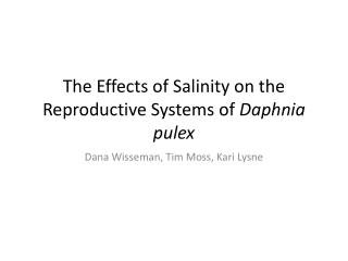 The Effects of Salinity on the Reproductive Systems of  Daphnia pulex