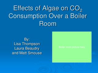 Effects of Algae on CO 2  Consumption Over a Boiler Room