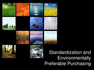 Standardization and  Environmentally  Preferable Purchasing
