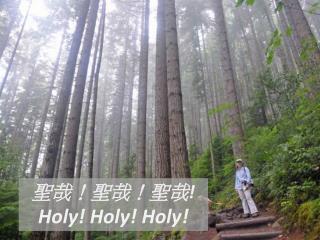 聖哉!聖哉!聖哉 !  Holy! Holy! Holy!