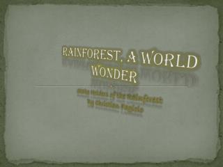Rainforest, A World wonder
