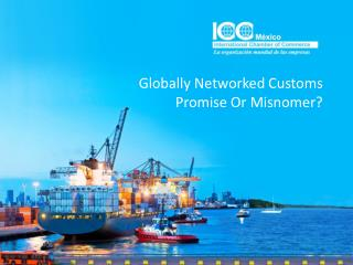 Globally Networked Customs Promise Or Misnomer ?