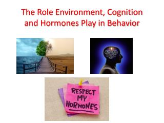 The Role Environment, Cognition and Hormones Play in Behavior