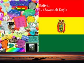 Bolivia    By : Savannah Doyle