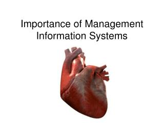 Importance of Management Information Systems