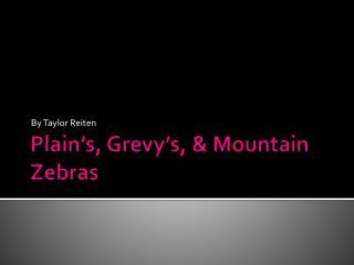 Plain�s,  Grevy�s , & Mountain Zebras