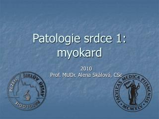 Patologie srdce 1: myokard