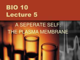 BIO 10  Lecture 5