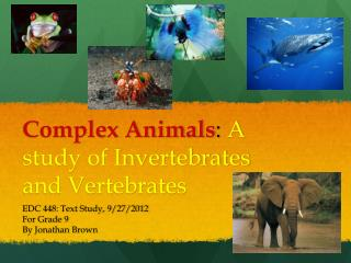 Complex Animals :  A study of Invertebrates and Vertebrates