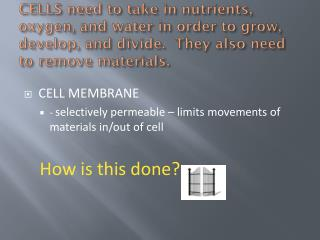 CELL MEMBRANE -  selectively permeable – limits movements of materials in/out of cell