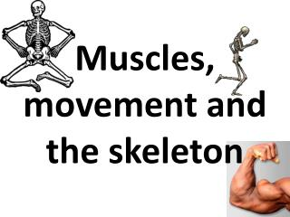 Muscles, movement and the skeleton