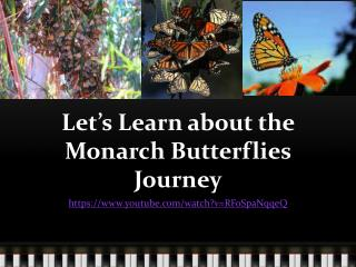 Let's Learn about the Monarch Butterflies Journey