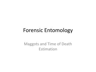 Time of Death Estimation