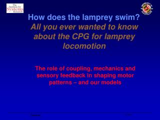 How does the lamprey swim All you ever wanted to know about the CPG for lamprey locomotion