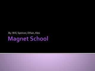 Magnet School