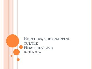 Reptiles, the snapping turtle How they live