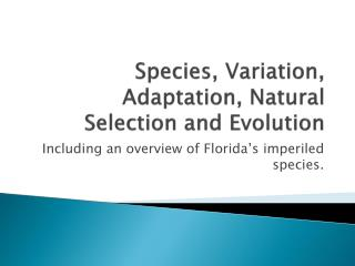 Species, Variation, Adaptation, Natural Selection and Evolution