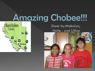 Amazing  Chobee !!!