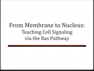 From Membrane to Nucleus:  T eaching Cell  S ignaling  via the  R as Pathway