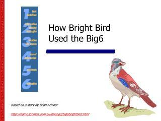 How Bright Bird  Used the Big6