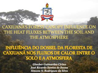 Glauber Guimarães  Cirino José Ricardo Santos de Souza Simone N. Rodrigues da Silva