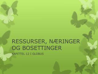 RESSURSER, N�RINGER OG BOSETTINGER