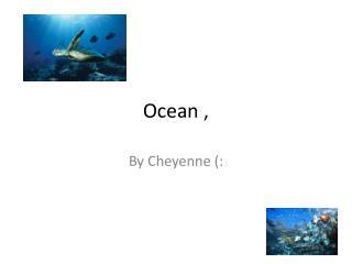 Ocean ,