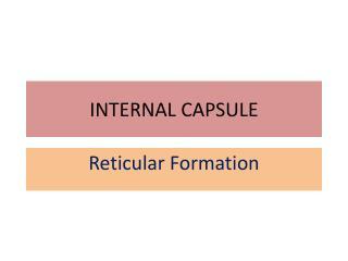 INTERNAL CAPSULE